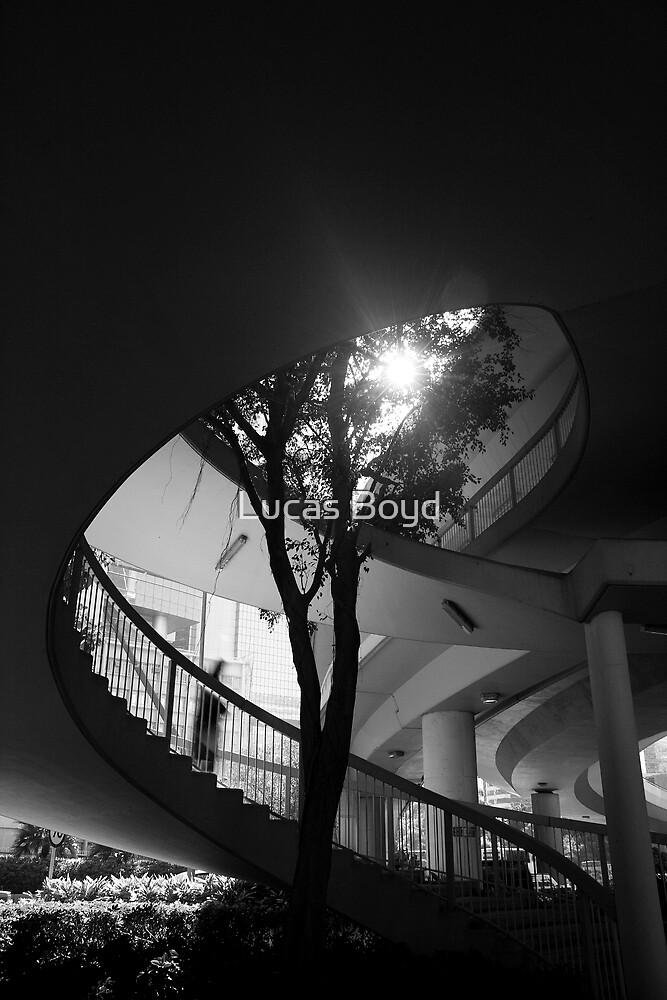 City Steps by Lucas Boyd