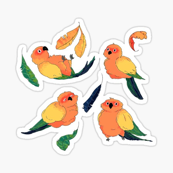 Sun Conure Pattern Sticker