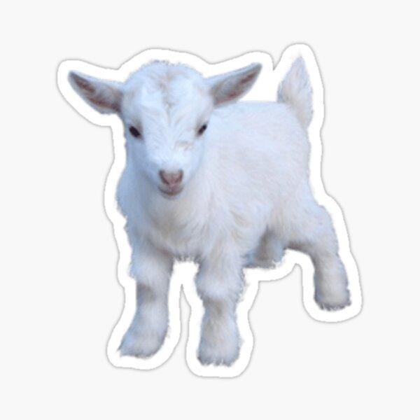 Goat Sticker Sticker