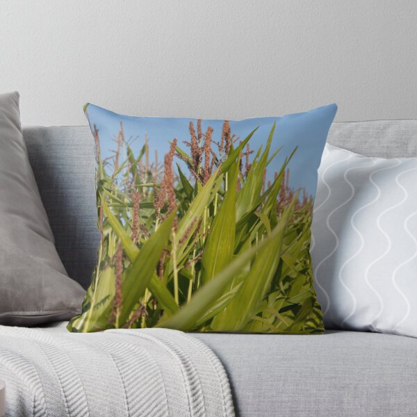 Aug - Brabourne - www.lizgarnett.com Throw Pillow