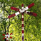 Railway Sign by Maria Meester