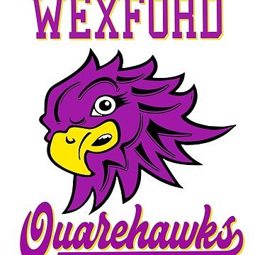 World Series of Hurling - Wexford Quarehawks by Joe-okes