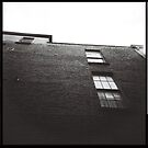 look up triptych by annette andtwodogs