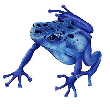 Poison Dart Frog by salamandaz