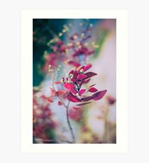 Japanese Breeze Art Print