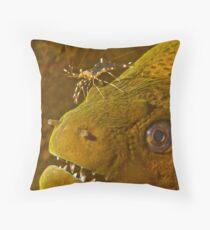 Cleaner Shrimp on Moray Throw Pillow