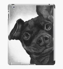 BELLA/ Miniature Pinscher iPad Case/Skin