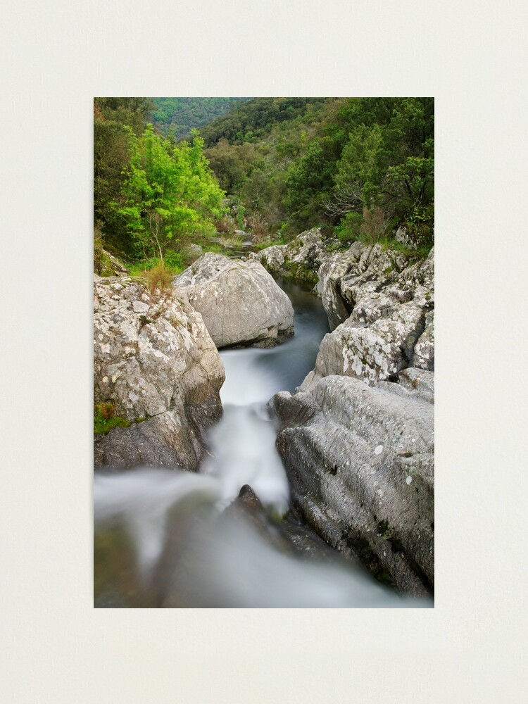Alternate view of Flow in the Verne river Photographic Print