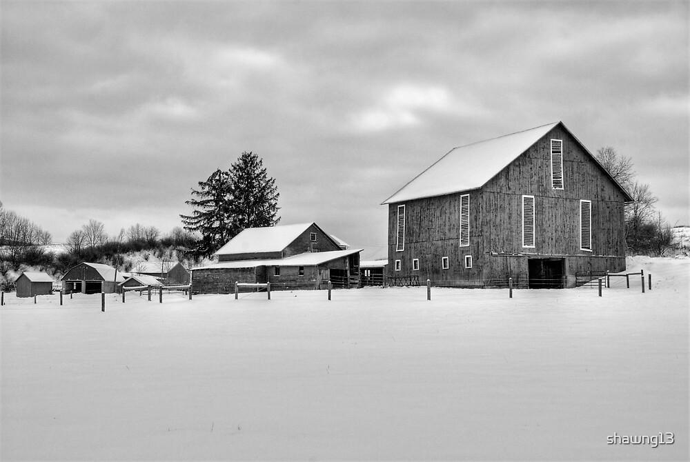 Rural Winter Scene by shawng13