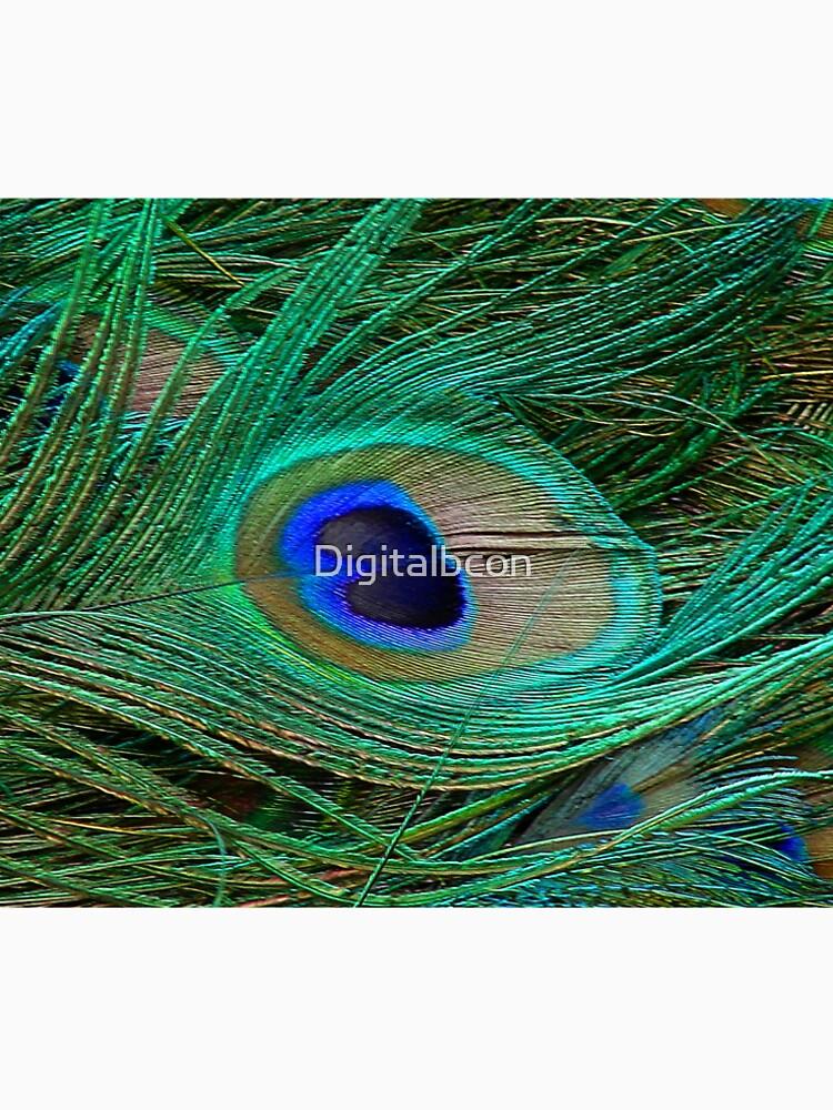 Indischer blauer Pfau-Federmakro-Druck von Digitalbcon