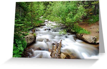 Rocky Mountain Stream by Gregory Ballos