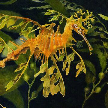 Leafy Seadraon and Kelp by salamandaz