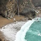 McWay Falls on a Foggy Day by Barbara  Brown