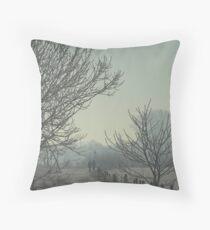 Frozen land Throw Pillow