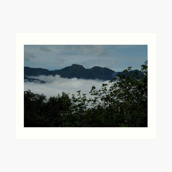 ~Mt Roberts, Juneau, Alaska~ Art Print