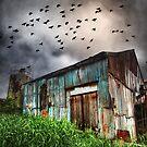 Dark Flight by Ben Ryan