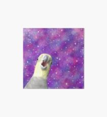 Cosmic Honk - Alex the Honking Bird Art Board