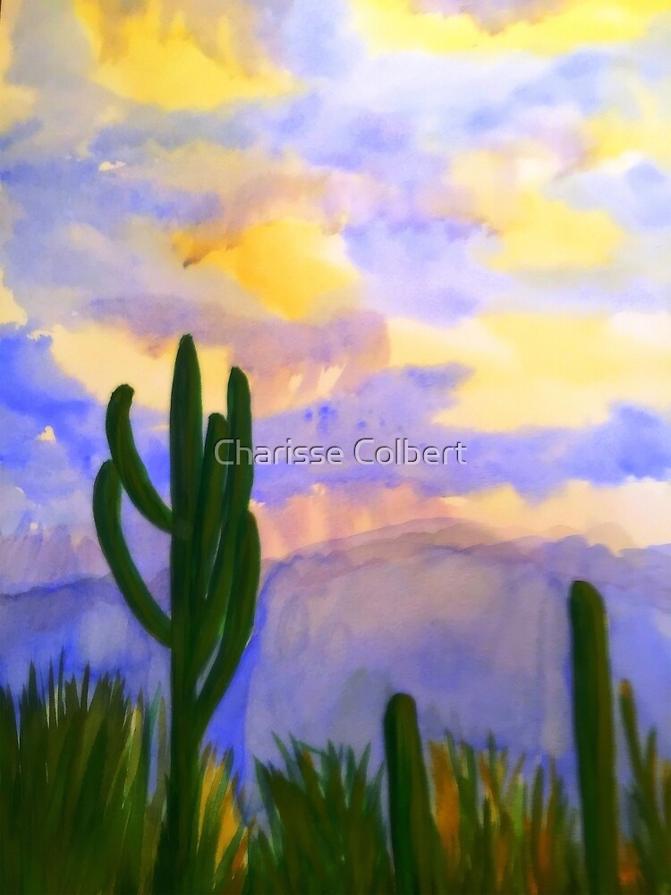 Monsoon Sunset by Charisse Colbert