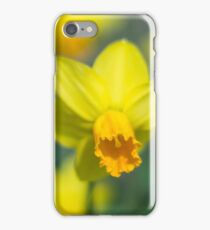 Narcis iPhone Case/Skin