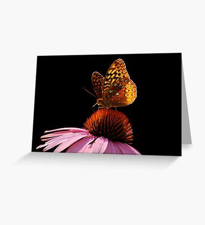 Fritillary Friend Greeting Card