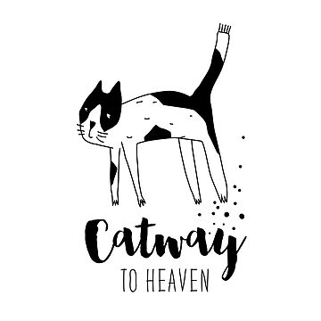 Catway to heaven by Catme