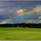Rainbow Over Hayfield by Wayne King