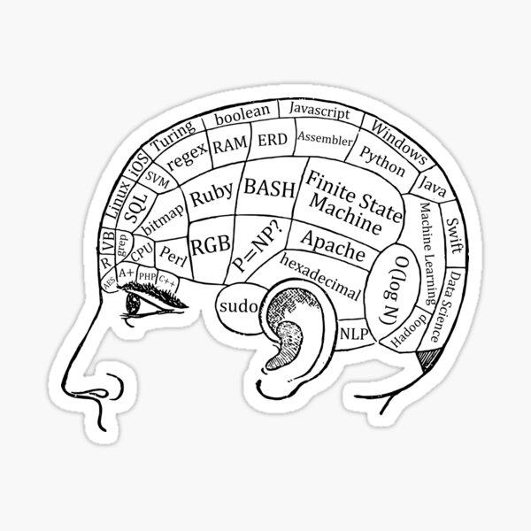 Brain of a Programmer and Computer Scientist Sticker