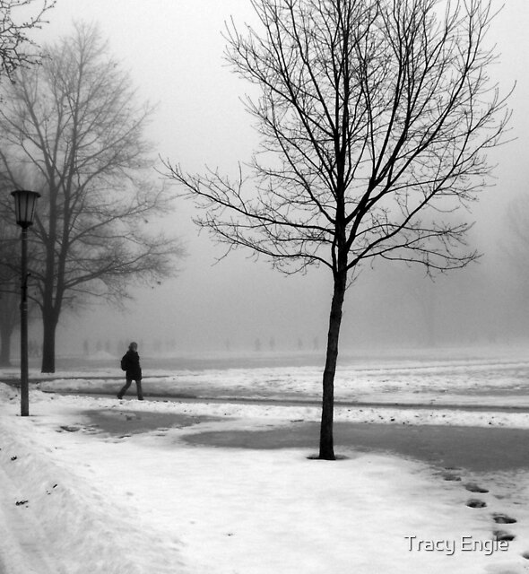 Someone Walked off the Path by Tracy Engle
