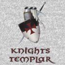 Knights Templar by dashinvaine