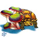Box Turtle - Multi Color Mushrooms by AngelaDeRiso