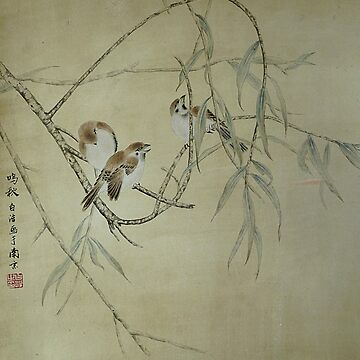 Sparrow in Willow by BirgitMo