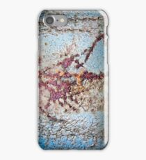 Microcosm iPhone Case/Skin