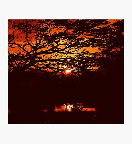 REDCOLOR - AFRICAN SUNSET Photographic Print