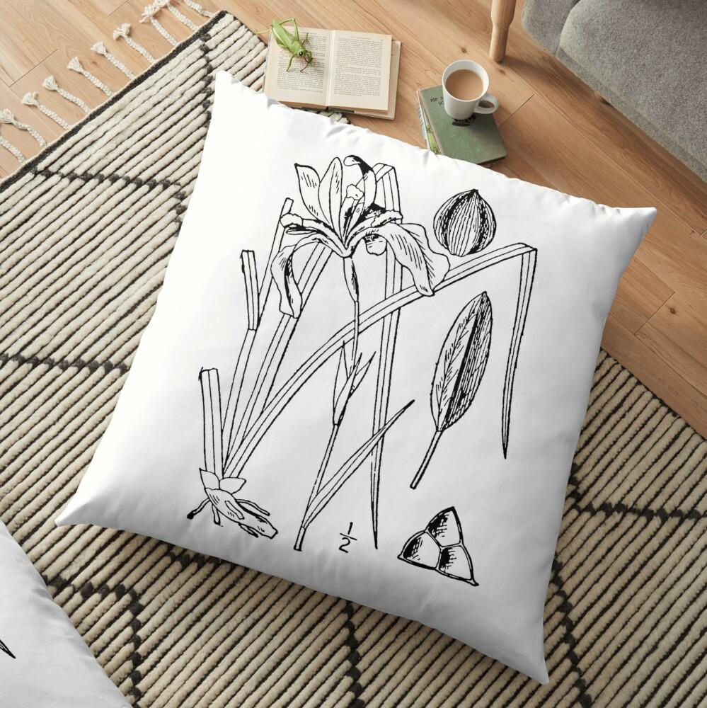 Botanical Scientific Illustration Black and White Iris Floor Pillow