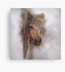 Horse equine animals,wildlife,wildlife art,nature Metal Print