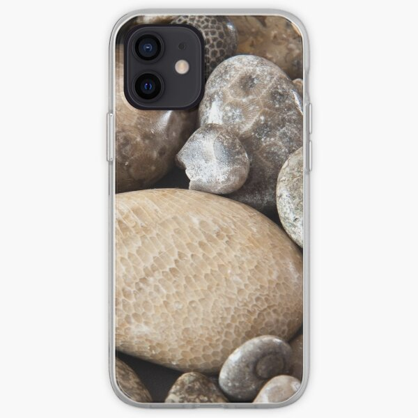 Fossil stones from the shore of Lake Michigan iPhone Soft Case