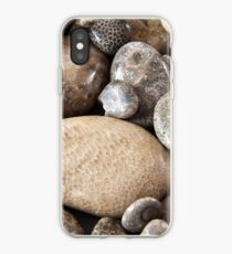 Fossil stones from the shore of Lake Michigan iPhone Case