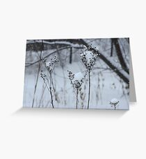Just a sprinkle of snow Greeting Card