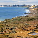 Poole Bay from Hengistbury Head by RedHillDigital