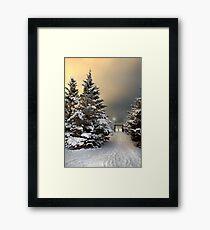 January 30 Framed Print