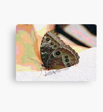 Butterfly Oil Pastel Canvas Print