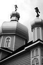 St. Vladimir's by Robert Meyer