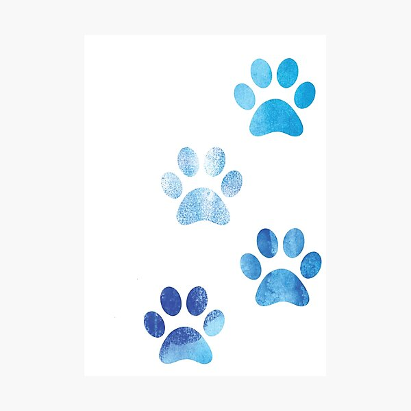 Watercolor Paw Prints Photographic Print