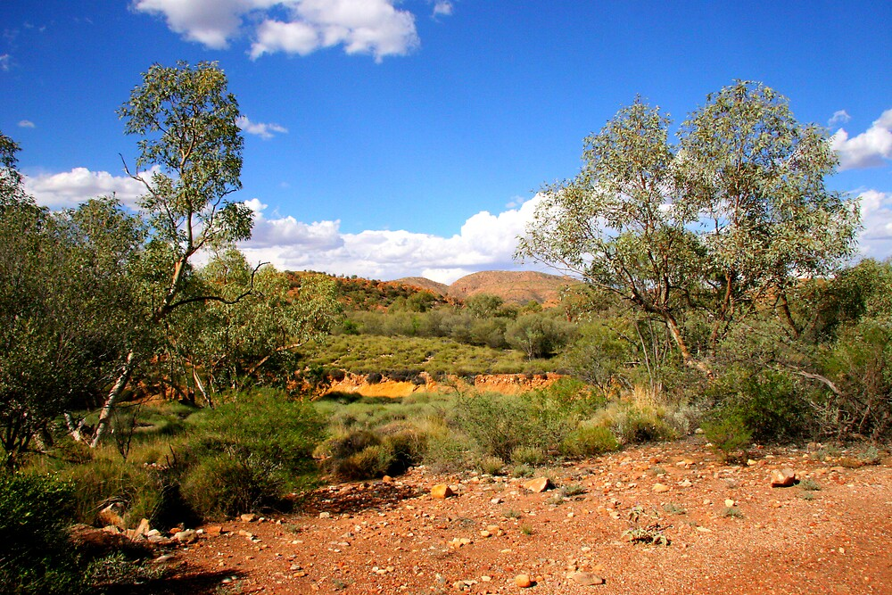 West Macdonnell Ranges XIV by Dave Law