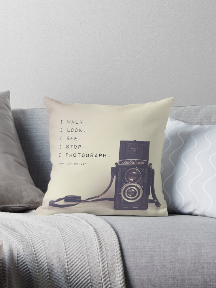 Vintage Camera Throw Pillow By Marenmisner Redbubble