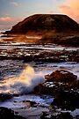 Sun Kissed by Varinia   - Globalphotos
