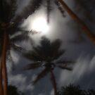 Moon Night On Erakor Is. Va. by forality