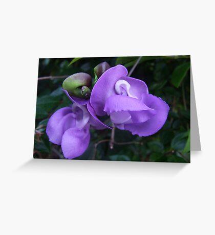 """Purple Beauty 2"" Greeting Card"