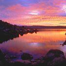 Morning Fishing at Jindabyne NSW Australia by Debbie Steer