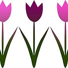 Tulips pink for stuff by Marlies Odehnal